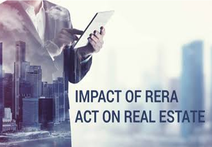 Real Estate Round Up 2019