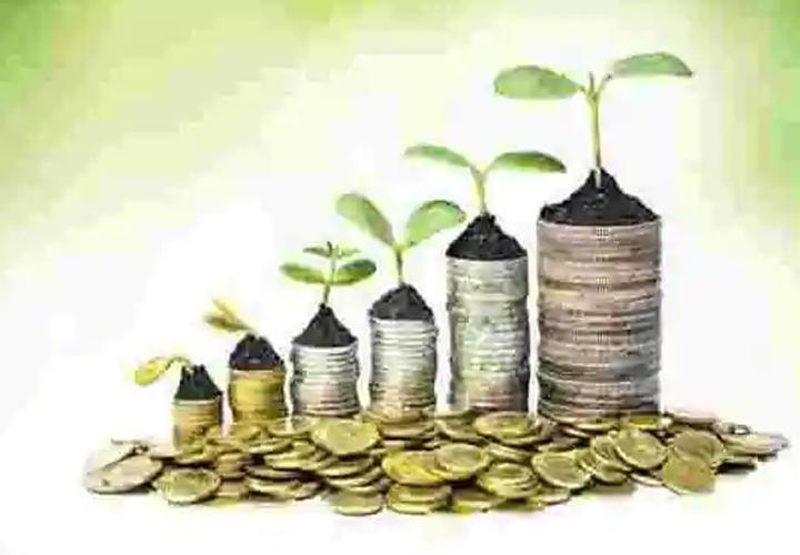 stock exchange regain confident