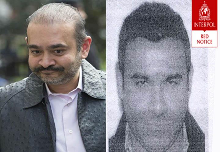 Interpol issues Red Corner Notice against Nirav Modi's brother Nehal