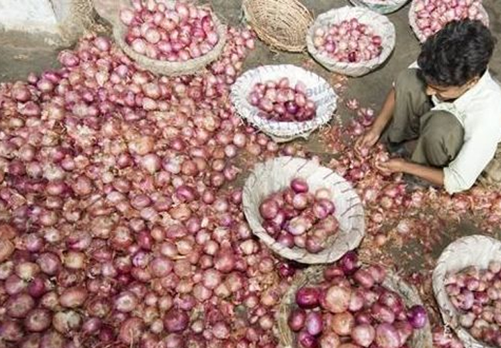 Centre to import onions to meet shortage