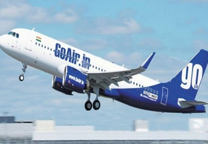 Go Airlines files DRHP for Rs 3,600 cr IPO