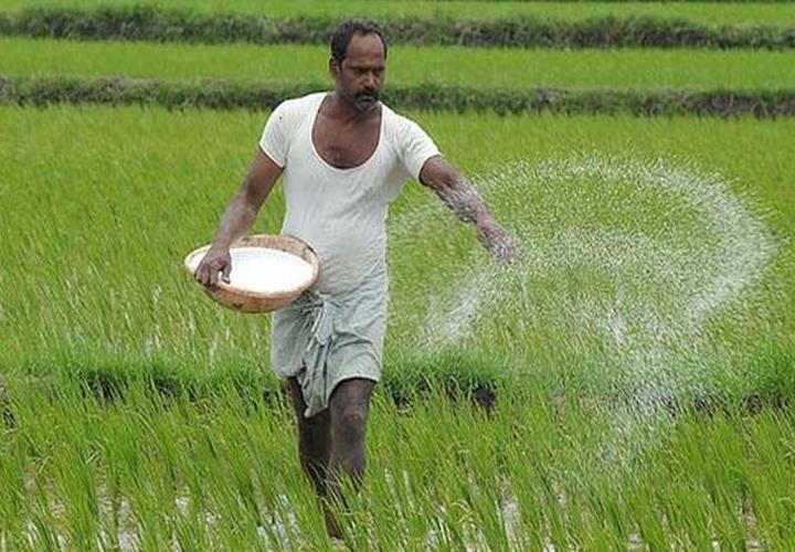 alappuzha farmers facing serious problem regarding farming
